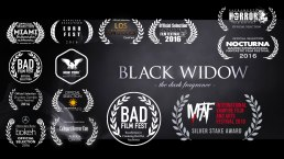 Laurels for BLACK WIDOW