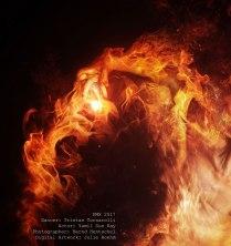 fire_detail2
