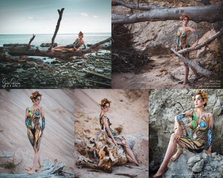 collage_northernNature_JulieBoehmArt