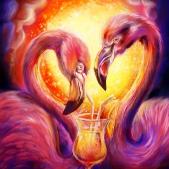 flamingo2_web